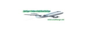 Yurtdışı Uçak Kargo